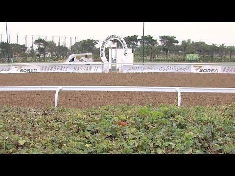 شاهد الفرس الزبير يفوز بجائزة الحسن الثاني لسباق الخيل بالدار البيضاء