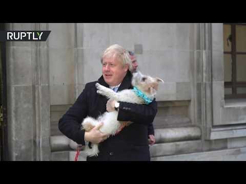 كلب بوريس جونسون يرافقه أثناء الإدلاء بصوته في الانتخابات