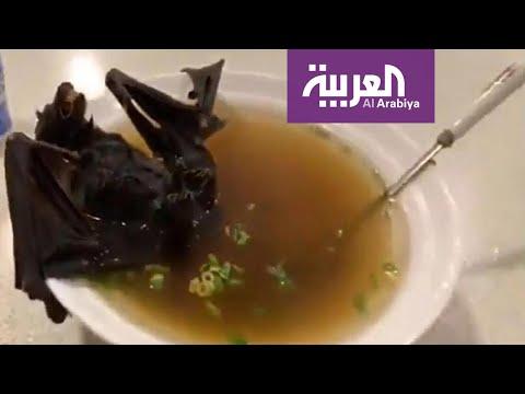 المطاعم في أندونيسيا تتحدى كورونا وتقدم أطباق من الخفافيش