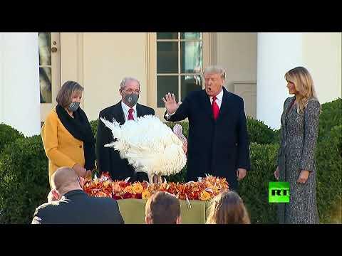 شاهد الرئيس الأميركي ترامب يمنح العفو عن الديك الرومي