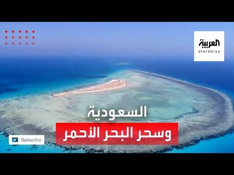 شاهد صور ساحرة من مشروع البحر الأحمر في السعودية