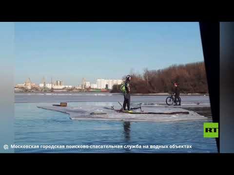شاهد رفع درّاجين عن قطعة جليد تحركت بهما في نهر موسكو