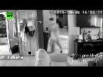 ماعز يتسلل إلى أحد المنازل في ولاية أوهايو الأميركية